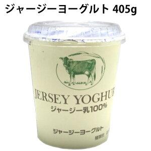 タカハシ乳業 ジャージーヨーグルト 405g