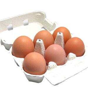 有精卵6個 小笠原さんの平飼自然養鶏の卵 6個