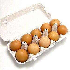カンナンファーム 丹波やまぶき卵 兵庫県産 30個