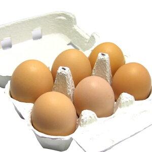 カンナンファーム 丹波やまぶき卵 6個