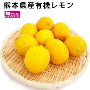 熊本県産 有機レモン 無農薬 8個