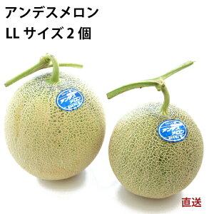【予約】産地直送 山形産 アンデスメロン 低農薬 LLサイズ 2個 ※発送予定:7月10日(金)〜