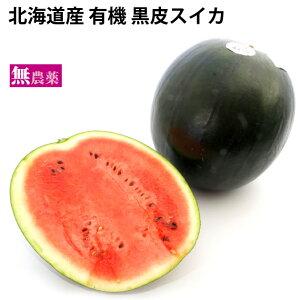 黒皮スイカ 北海道産 無農薬栽培 1玉