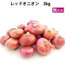 レッドオニオン 無農薬栽培 3kg