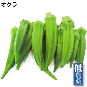オクラ 100g×5パック 低農薬