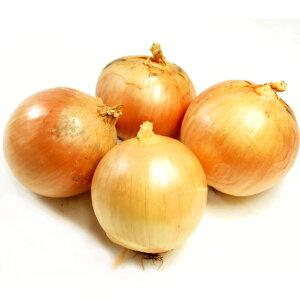 玉ねぎ 無農薬栽培 1kg