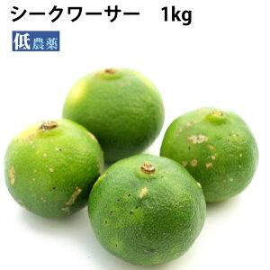 シークワーサー 国産 沖縄県産 低農薬栽培 1kg