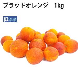 ブラッドオレンジ 低農薬栽培 1kg 送料別