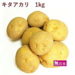 じゃがいも キタアカリ 無農薬栽培 1kg
