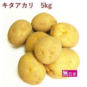 じゃがいも キタアカリ 無農薬栽培 5kg
