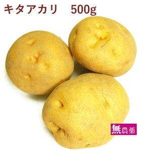 じゃがいも キタアカリ 無農薬栽培 500g
