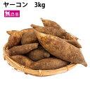 ヤーコン 北海道産 無農薬栽培 3kg