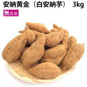 さつまいも 安納黄金(白安納芋) 無農薬栽培 3kg