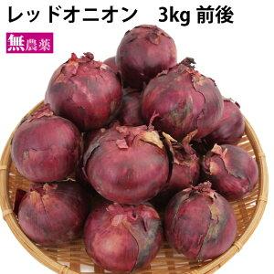 レッドオニオン 北海道産 3kg