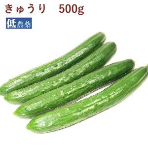 きゅうり 低農薬栽培 500g