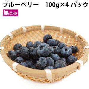 ブルーベリー 無農薬栽培 100g×4パック
