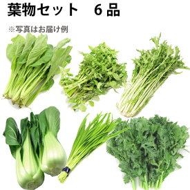 葉物セット 6品