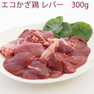 千葉産直サービス エコかざ鶏 レバー 300g 1パック