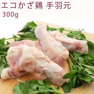 千葉産直サービス エコかざ鶏 ウィング(手羽元) 300g 1パック