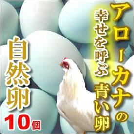 幸福をもたらすアローカナの青い卵10個入もちろん平飼い・自然卵!