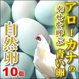 【3980円以上でも送料別商品になります】幸福をもたらすアローカナの青い卵10個入もちろん平飼い・自然卵!