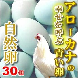 【送料無料】幸福をもたらすアローカナの青い卵30個入もちろん平飼い・自然卵!
