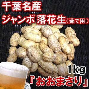 【9中頃より順次発送予定】千葉県産ジャンボゆで落花生『おおまさり』生落花生1kg