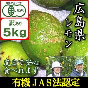 【訳あり】【10中から末頃より順次発送】JAS法に基づいて作られた広島国産訳ありレモン5kg『鉄腕ダッシュで紹介』