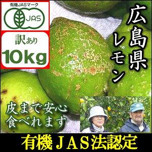 【予約】【訳あり予約】【2021年10月末よりお届け】JAS法に基づいて作られた広島国産訳ありレモン10kg『鉄腕ダッシュで紹介』