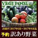 夏にお届けご予約【訳あり規格外旬野菜1000円セット全4〜5種でお届け】