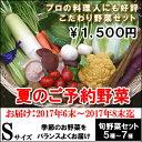 【夏予約】少量お野菜セット旬野菜5種から7種でお届け『プロの料理人が使っているお野菜を自宅で 』