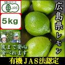 【10月中頃から末頃よりグリーンレモンで発送】JAS法に基づいて作られた広島国産レモン5kg『鉄腕ダッシュで紹介』