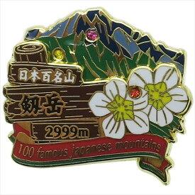 2段ピンズ ピンバッジ 日本百名山 剱岳 エイコー コレクションケース入り トレッキング 登山 メール便可