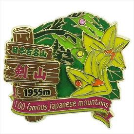 2段ピンズ ピンバッジ 日本百名山 剣山 エイコー コレクションケース入り トレッキング 登山 メール便可