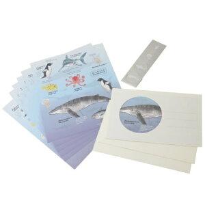 STUDY HOLIC 手紙セット レターセット 海洋生物学 グリーンフラッシュ 勉強図鑑風 便箋&封筒&シール メール便可