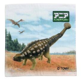 インクジェットプリント ウォッシュタオル ハンドタオル アニア アニマルアドベンチャー アンキロサウルス 恐竜 林タオル 男の子向け メール便可