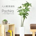 パキラM(高さ107) 人工観葉植物 光触媒 パキラ 水やり不要 高さ107 インテリアグリーン 観葉植物 造花 [パキラM]