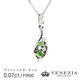 【10%OFFクーポン】【〜9/25】デマントイドガーネット ネックレス Pt900 プラチナ 0.07ct稀少石 レアストーン ダイヤモンド ペンダント ギフト プレゼント 天然石 宝石 限定1点もの