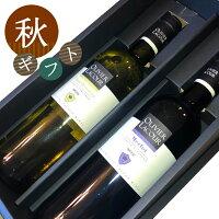 【クール便で送料無料】夏ギフトセットお中元ワイン