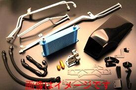 トラスト TRUST GReddy DCTクーラーキット R35用 NISSAN ニッサン GT-R CBA-R35 VR38DETT 10.11-16.6 (12024811)