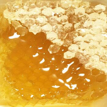 コムハニー巣蜜200g蜂の巣のハチミツ|アカシアはちみつギフトプチギフト巣蜂蜜コームハニー巣みつ純粋非加熱インフルエンザ予防プロポリスローヤルゼリーロイヤルゼリー生ハニーオードブル雛祭り手土産青空レストランお取り寄せスーパーフード