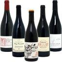 ワインセット 【送料無料】BIOワイン極上赤だけ5本セット≪第45弾≫ ワイン ギフト wine gift ^W03I45SE^