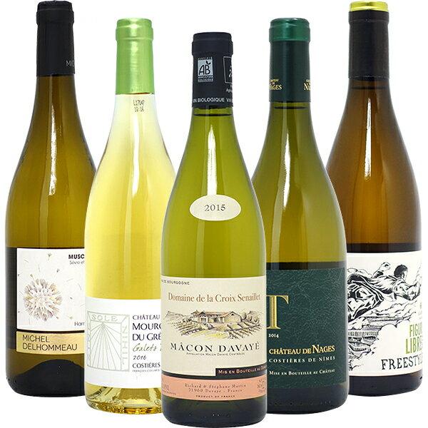 [5]ワインセット 【送料無料】BIOワイン極上白5本セット≪第52弾≫ 白ワイン【ワイン】 チラシ5^W01I52SE^
