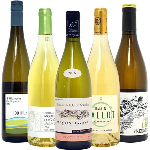 ワインセット 送料無料BIOワイン極上白5本セット(第54弾) 白ワイン パーティ 料理に合う 安くて美味しい^W01I54SE^