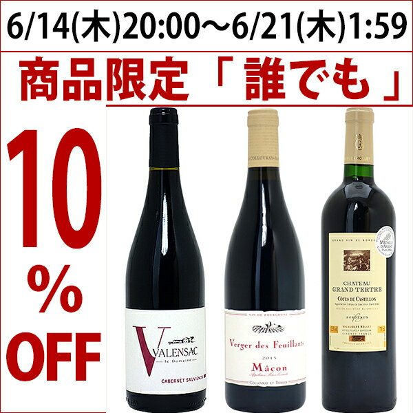 ワインセット 【送料無料】フランス名産地の有名ワイン 厳選赤3本セット≪第91弾≫wine gift ^W0F391SE^