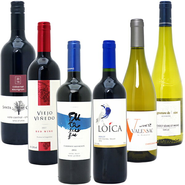 ワインセット 【送料無料】美味しいものだけ6本(赤4本+白2本)≪第107弾≫ 金賞 赤ワイン 白ワイン wine gift パーティ 料理に合う 安くて美味しい^W0F752SE^