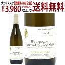 [2014] ブルゴーニュ オート コート ド ニュイ ブラン 750mlジャイエ ジル (ブルゴーニュ フランス)白ワイン コク辛口 ワイン ^B0JGHB14^