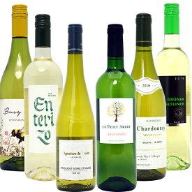 【送料無料】名産地 代表ぶどう品種 白6本セット ワインセット ^W0S311SE^