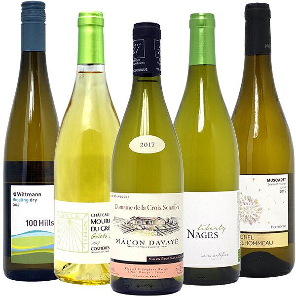 ワインセット 送料無料BIOワイン極上白5本セット 白ワイン パーティ 料理に合う 安くて美味しい^W01I56SE^