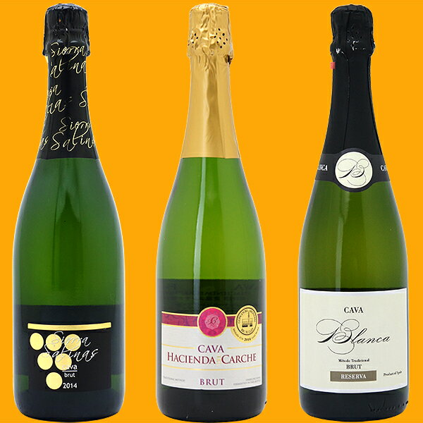 ワインセット 送料無料スパークリングワイン すべて本格シャンパン製法の豪華泡3本セット (第101弾) ワイン ギフト wine gift パーティ 料理に合う 安くて美味しい^W0GR19SE^